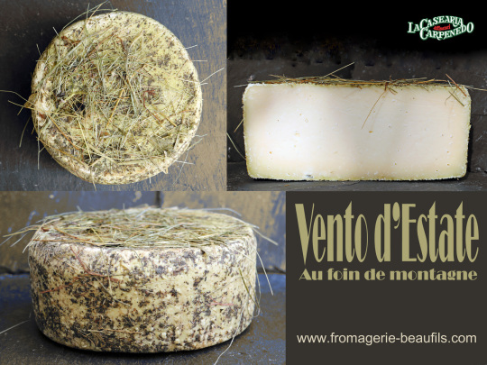 Vento d'Estate. Fromage au foin. Fromagerie Beaufils.