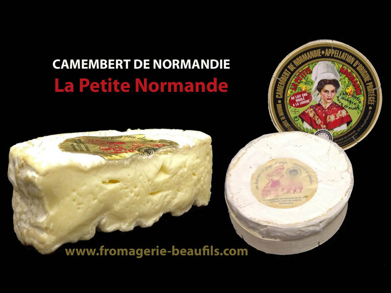 Camembert de Normandie. Camembert La Petite Normande. Fromagerie Beaufils.