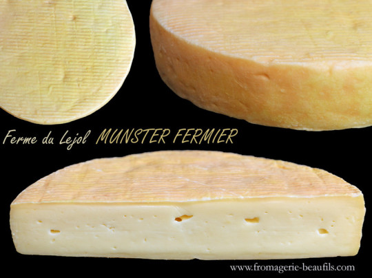 Munster. Fromage de vache. Fromagerie Beaufils.