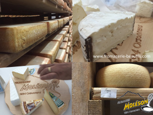 Fromages suisses. Fromagerie Moléson. Fromagerie Beaufils.