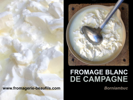 Fromage blanc de campagne. Lait cru. Fromagerie Beaufils.