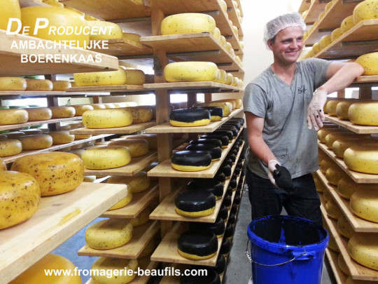 Visites aux producteurs. En Hollande. Fromages hollandais. Gouda. Fromagerie Beaufils.