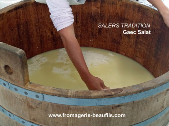Salers Tradition. Gaec Salat. Fromagerie Beaufils.
